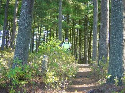 bryan-trail