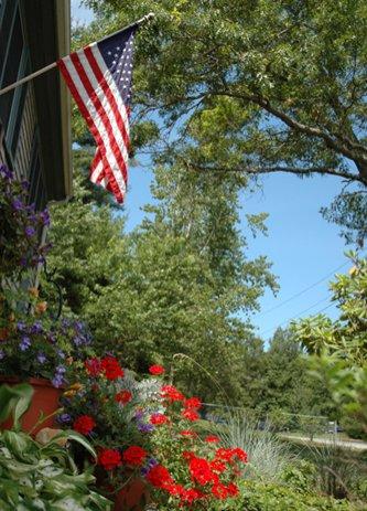 Flag Annuals 400Pix Slightly Longer Dsc 0358